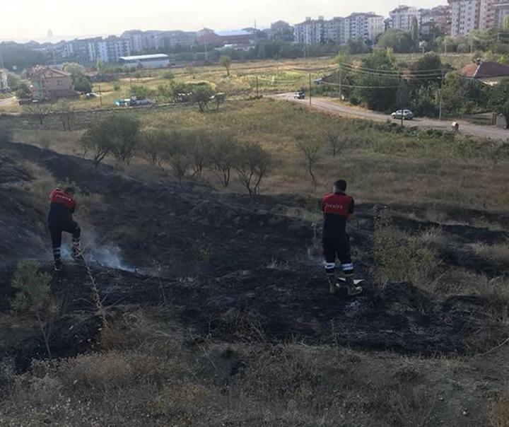 Sungurlu'da çocukların yaktığı ateş sonucu çok sayıda yeni dikilmiş çam ağacı zarar gördü.   Sungurlu Haber
