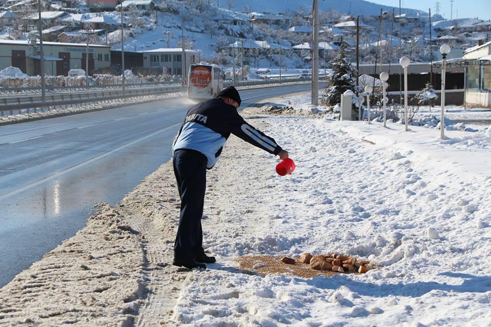 Sungurlu Belediyesi soğuk hava ve kar yağışından dolayı yiyecek bulmakta zorlanan sokak hayvanlarını unutmuyor. | Sungurlu Haber