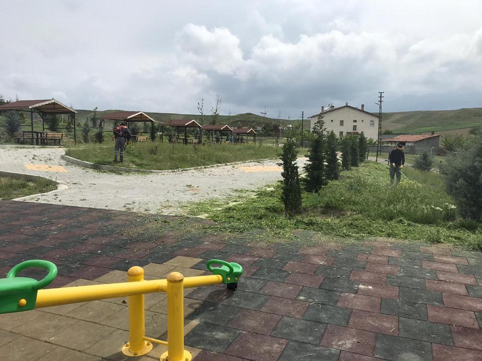 Sungurlu Belediyesi Park ve Bahçeler Müdürlüğü ekipleri, yabani otların temizliği ile çim biçme çalışmalarını şehrin dört bir yanında sürdürüyor. | Sungurlu Haber