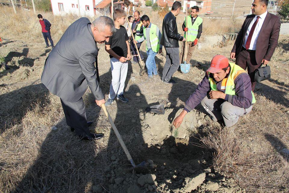 'Geleceğe Nefes' seferberliği ile gelecek nesillere daha yeşil bir Türkiye bırakmak için düzenlenen 11 Milyon Ağaç Dikim Kampanyası kapsamında Sungurlu Belediyesi 670 fidanı toprakla buluşturdu. | Sungurlu Haber