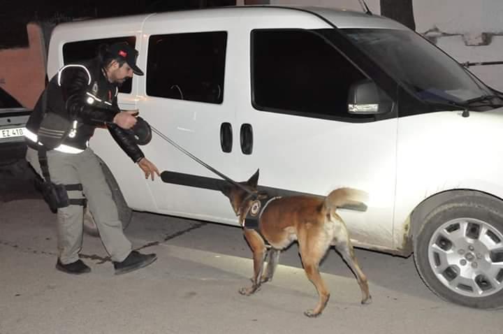 Emniyet Genel Müdürlüğü, Narkotik Suçlarla Mücadele Daire Başkanlığı koordinesinde ülke genelinde eş zamanlı 'Narkotik uygulaması' gerçekleştirdi.   Sungurlu Haber