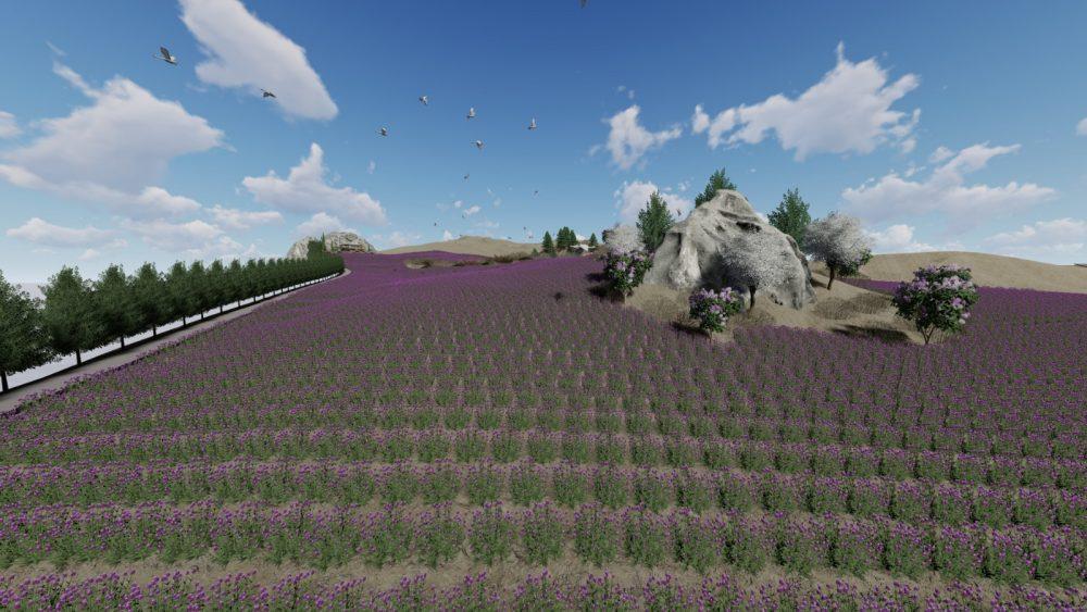 Anitta'nın Laneti olarak tarihi literatüre geçen ve zorlu bir kuşatma sonrasında tüm Hattuşa' ya yabani ot tohumu ektirdiğini söyleyen Kral Anitta'dan 4 Bin yıl sonra Boğazkale Kaymakamlığı Hattuşa' nın Lavanta bahçelerine dönüşmesini sağladı. | Sungurlu Haber