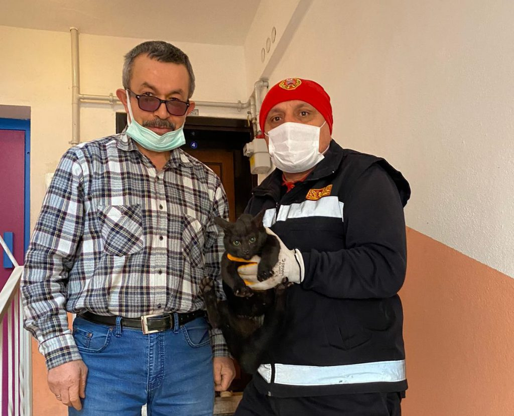 Sungurlu'da bir apartmanın havalandırma boşluğuna düşen kedi itfaiye ekiplerince kurtarıldı. | Sungurlu Haber